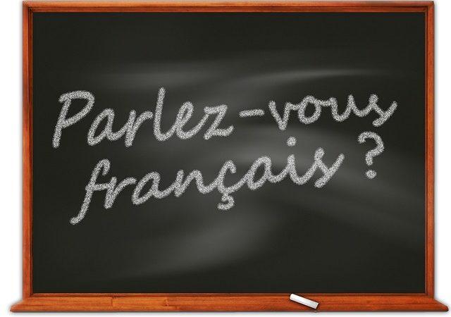 Фразы-клише и идиомы на французском языке со звуком